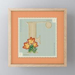Sellos Naturales. Letter F. Flower: Freesia Framed Mini Art Print