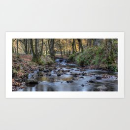 Cannop Brook Panorama Art Print