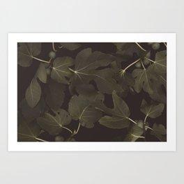 Botanical I _ Night Art Print