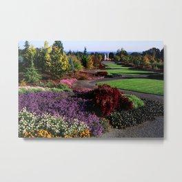 Image USA Oregon Garden Nature Bellis Gardens Tagetes Lawn Shrubs Bush Metal Print