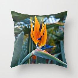 Magic Bird of Paradise Throw Pillow