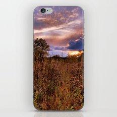 Marsh Sunset iPhone & iPod Skin
