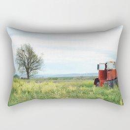 Field Below Rectangular Pillow