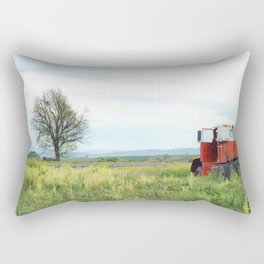 Field Below Rectangular Pillow