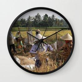 Rice Field Wall Clock