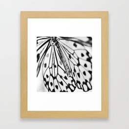 Butterfly Wings Framed Art Print