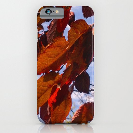 Autumn is in the Air iPhone & iPod Case