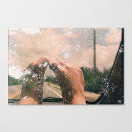 bearFeet Canvas Print