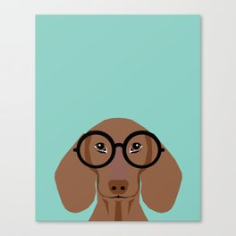Remy - Daschund with Fashion glasses, hipster glasses, hipster dog, doxie,  Canvas Print