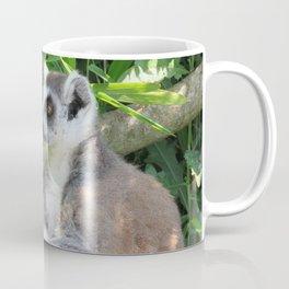 Cute and relaxed Ring-tailed lemur (lemur catta) Coffee Mug