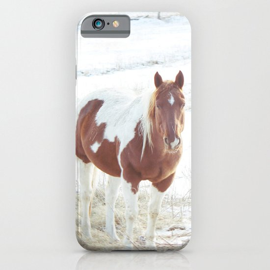 Snow + Horse iPhone & iPod Case
