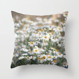 Wild Daisies 4134 Throw Pillow