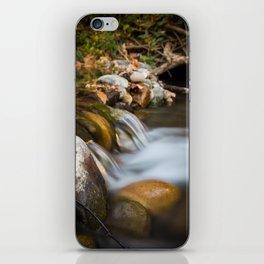 Autumn on Big Chico Creek iPhone Skin