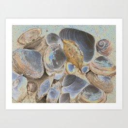 Seashell Abstract Art Print