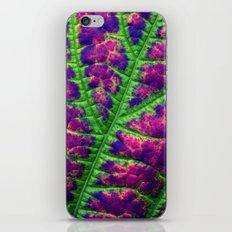 leaf abstract III iPhone & iPod Skin