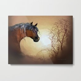 HORSE - Misty Metal Print