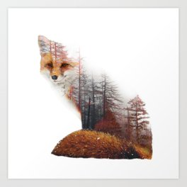 Misty Fox Art Print
