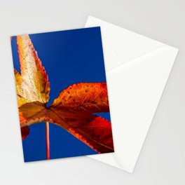 Fall Colors, Red and Yellow Foliage Against Sky Nature / Botanical Photograph Stationery Cards