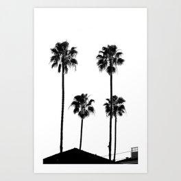 Palm Tree Noir #63 Art Print