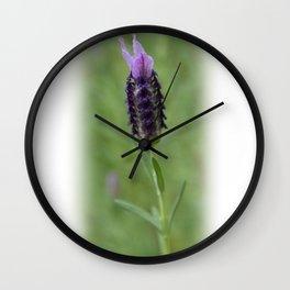 Lavender 2..... Wall Clock