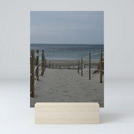 Beach days and sand dollars Mini Art Print