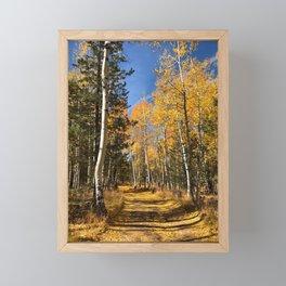 A Fall Drive Among the Aspens by TL Wilson Photography Framed Mini Art Print