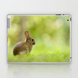 The Happy Rabbit Laptop & iPad Skin
