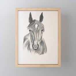 Firecracker #horse Framed Mini Art Print