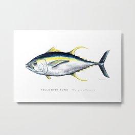 Yellowfin Tuna Watercolor Fish Illustration Metal Print
