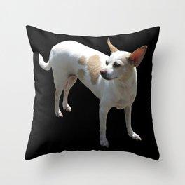 black dog Throw Pillow