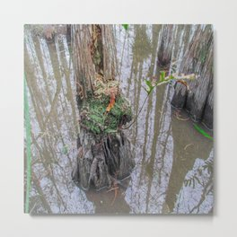 The  Swamp Fairy's Home Metal Print