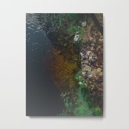 Summer Lake - Aerial Photography Metal Print
