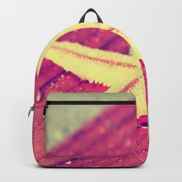 Stars and Stripes on the beach Backpack