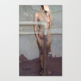 Nude in the chapped wall Canvas Print