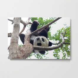 PLAYING PANDA Metal Print