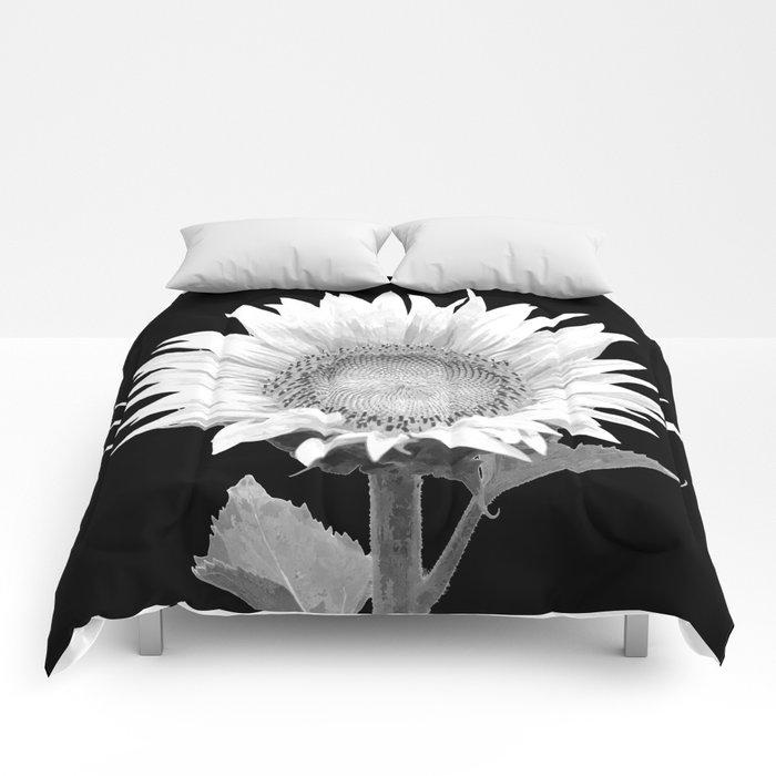 White Sunflower Black Background Comforters
