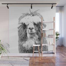 Black and White Alpaca Wall Mural