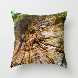 Tree Trunk Texture #2 Throw Pillow
