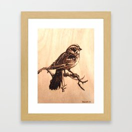 Lark Sparrow Framed Art Print