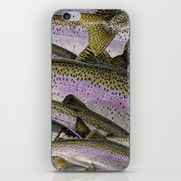 The other Rainbow Coalition iPhone Skin