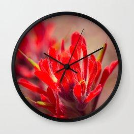 Indian Paintbrush Wildflower Wall Clock