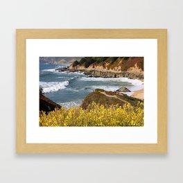 California Coast Overlook Framed Art Print