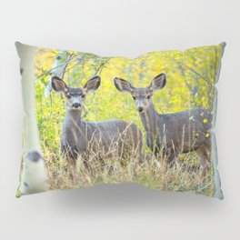 Double Take - Pair of Young Mule Deer Hiding in Autumn Aspens Pillow Sham