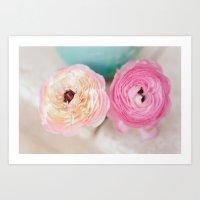 ranunculus pink flowers Art Print
