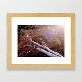 Kootenai Creek, Montana Framed Art Print