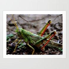 Locust Art Print