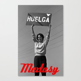 Chicana Activist Hall of Fame Canvas Print