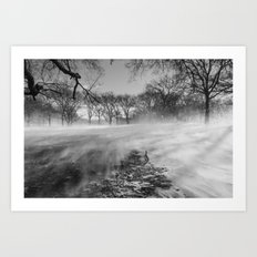 In The Blizzard Art Print