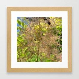 Summer Grasses 2 Framed Art Print