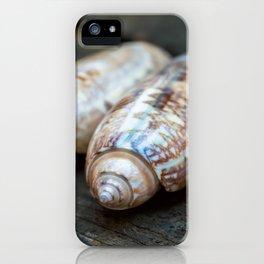 Three Olive Shells iPhone Case